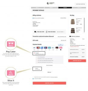 Klarna buy now pay later options